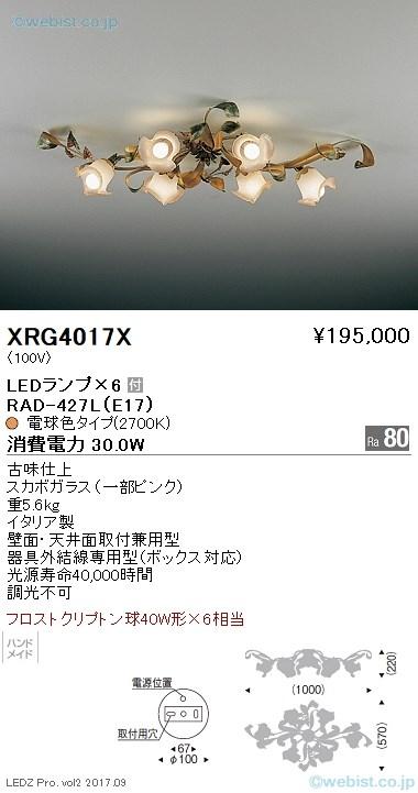 XRG4017X