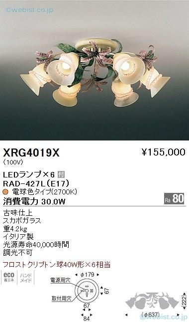 XRG4019X